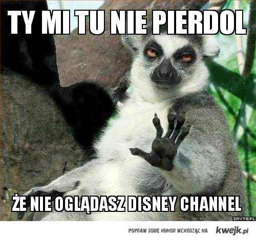 disney channel ;d