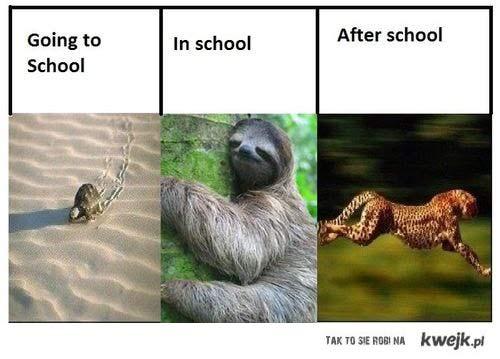 przed,w i po szkole