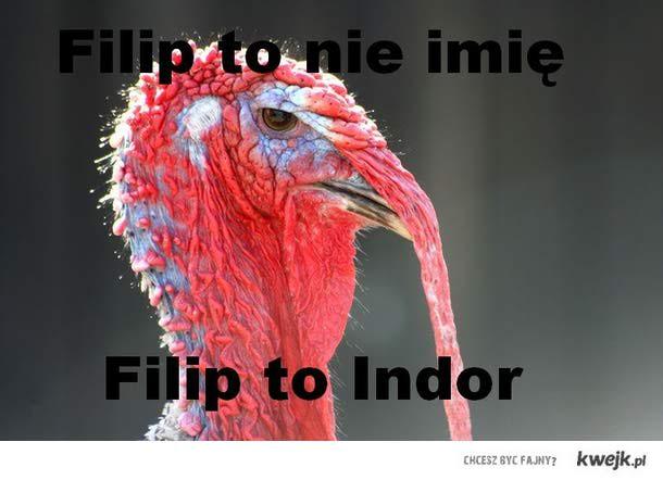 Filip Indor
