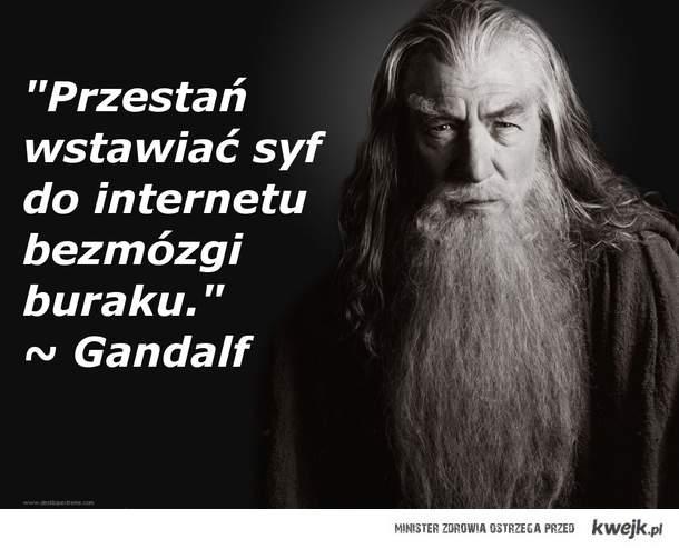 Słowa prawdy od Gandalfa