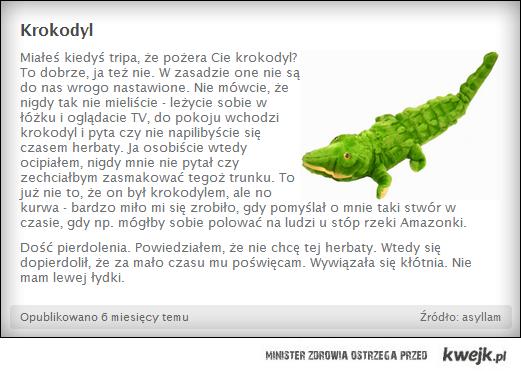 Krokodyl robi herbatę