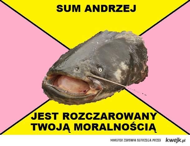 Sum Andrzej