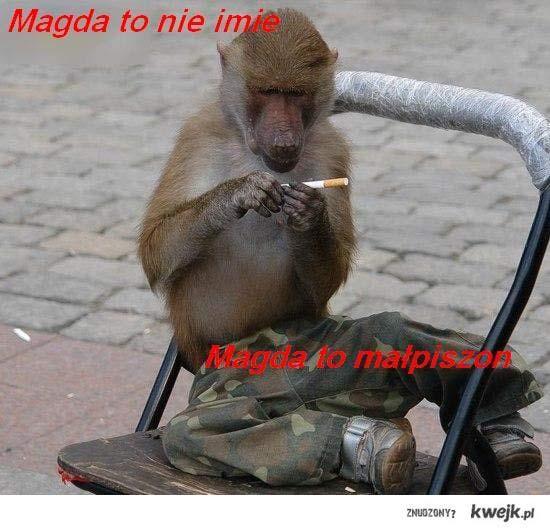 Magda to nie imie, Magda to malpiszon.