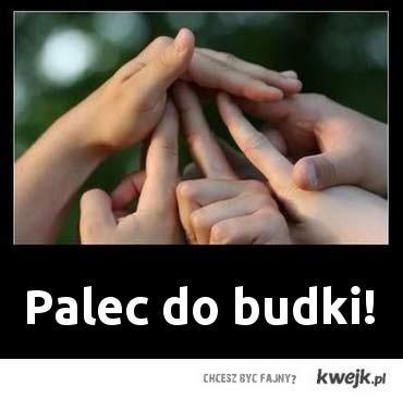 palec do budki