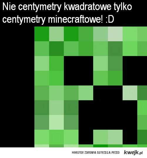 Centymetry minecraftowe