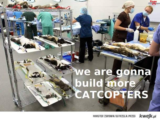 more catcopters