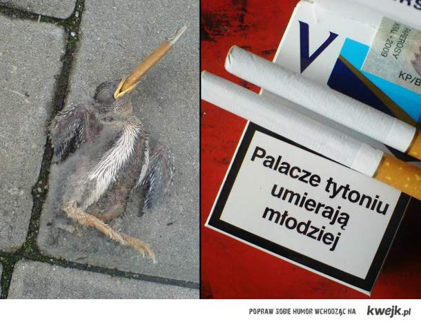 młodzi palacze