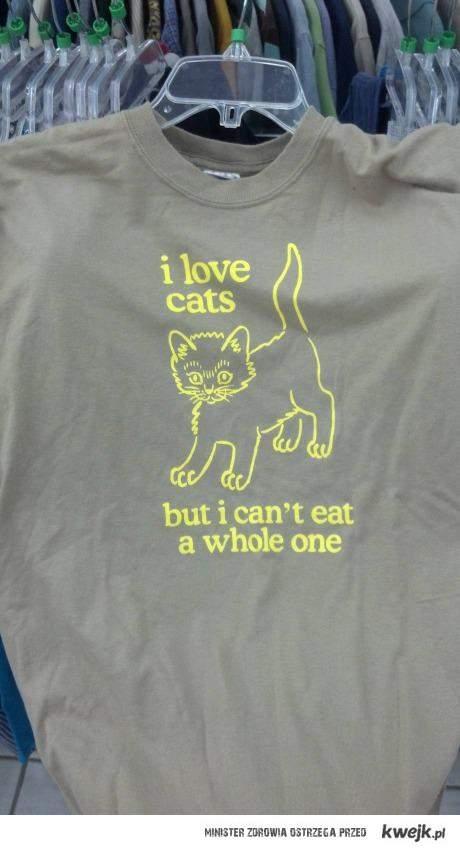 Kocham koty