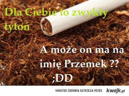Przemysław Tytoń <33
