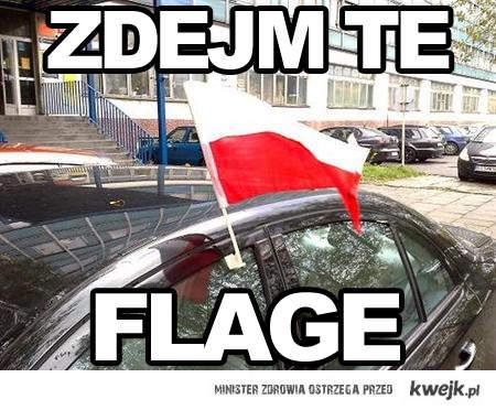 ZDEJM TE FLAGE