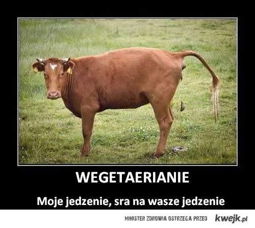Hej, wegetarianie