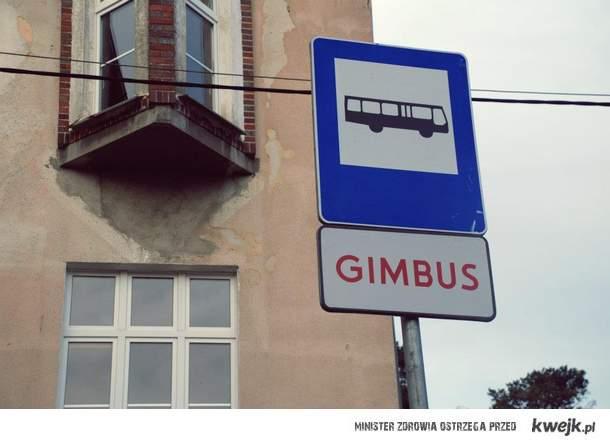 Międzyzdroje  Gimbus