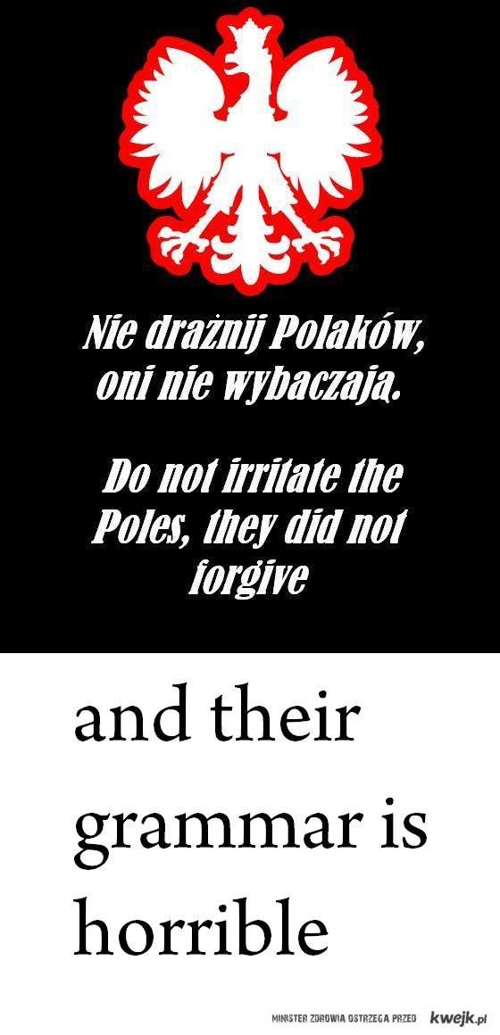 polska właśnie