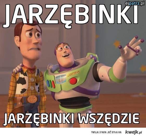 Jarzębinki
