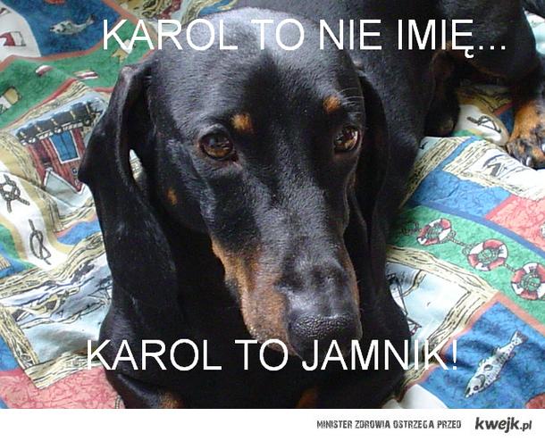 Jamnik Karol