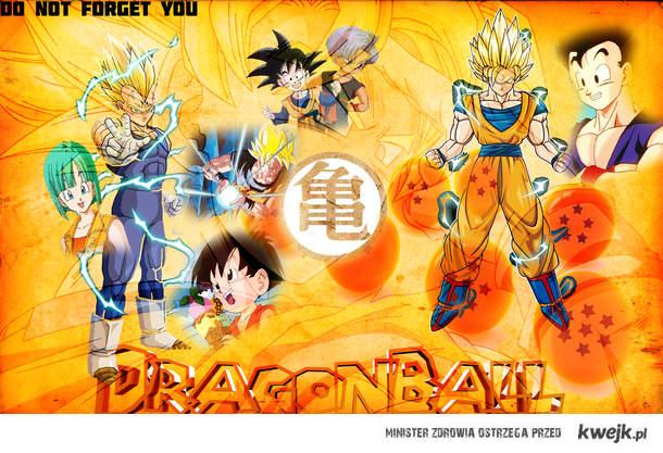 Goku Nie Zapomne O Tobie