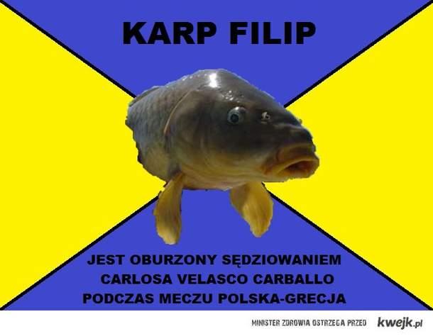 Mecz Polska-Grecja, opinia karpia