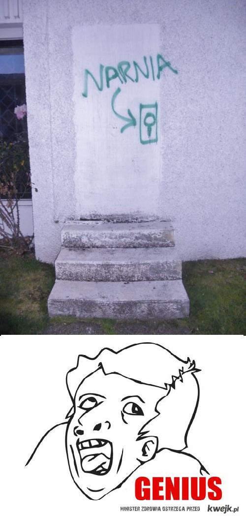 Drzwi do Narnii