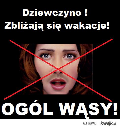 Ogol wasy
