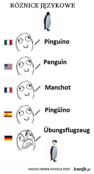 Wspaniały język niemiecki