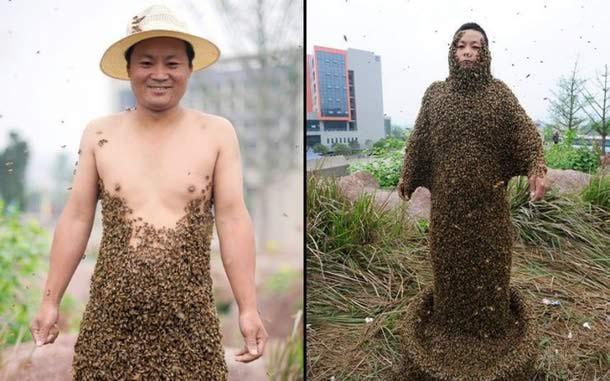 A ty się boisz małej pszczółki