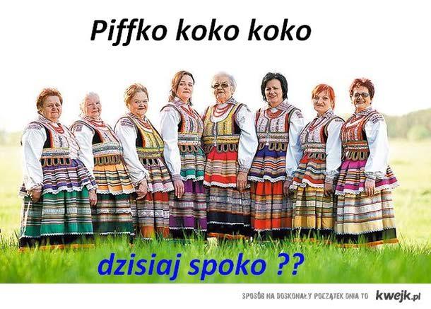 Piffko dziś ??