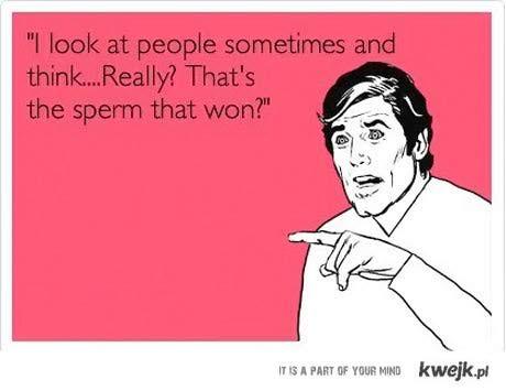 serio, ta sperma wygrała?