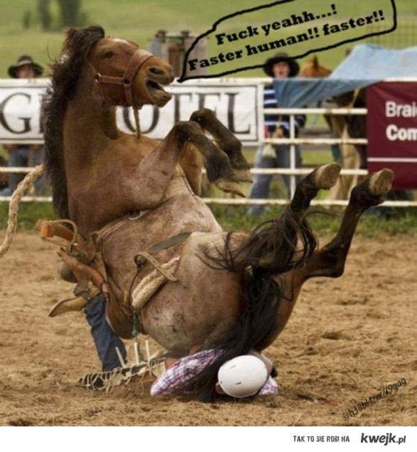jazda konia