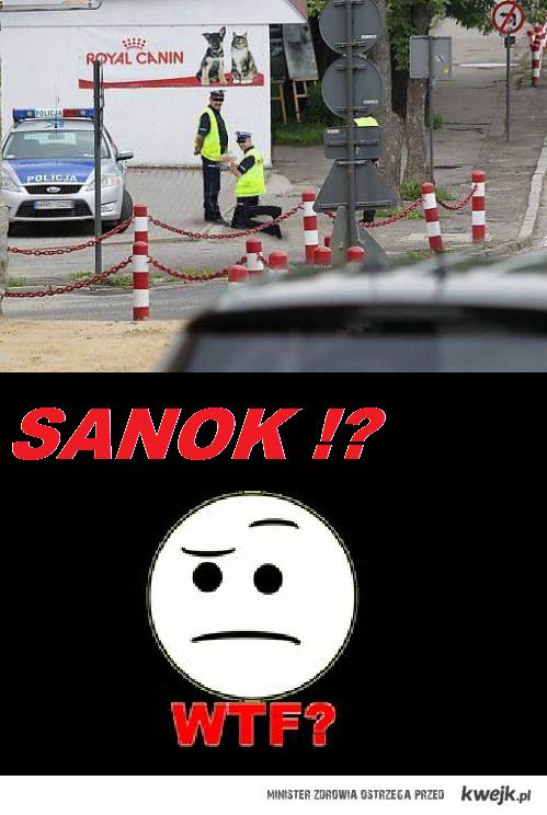 Sanok ?