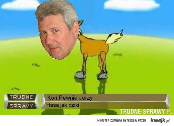 koń pewnie Jerzy, koń pewnie Jerzy nananinanina koń pewnie Jerzy!!!