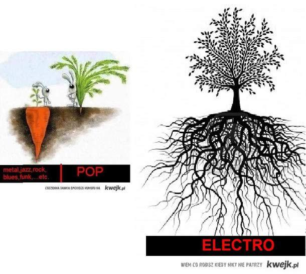 Electro rox