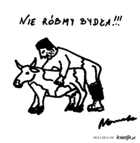 nie róbmy bydła