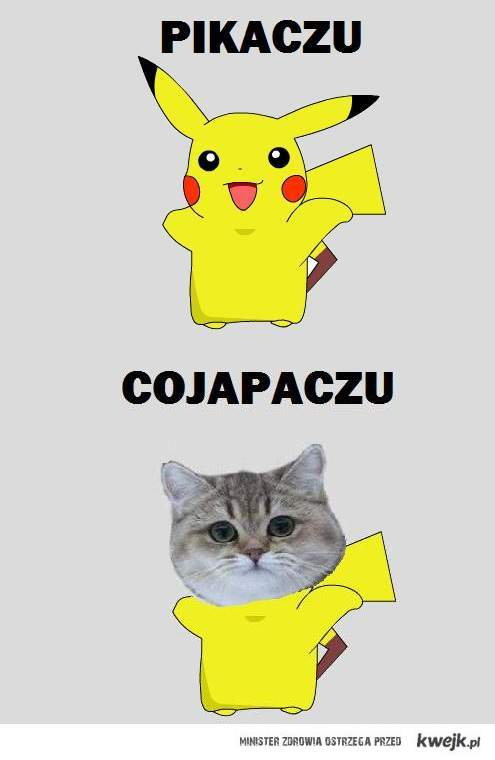 CO JA PACZU