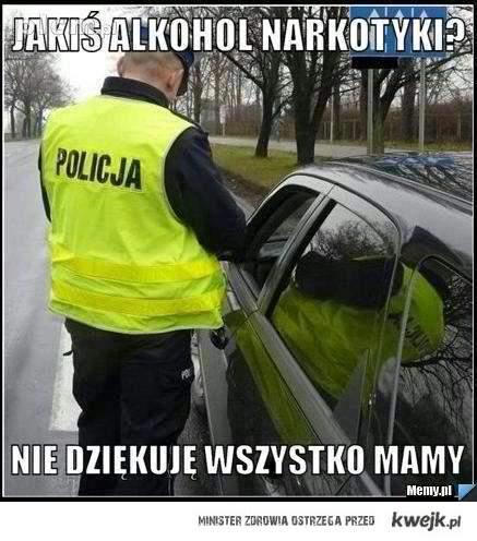 Pomocna policja