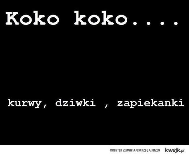 Koko, Koko
