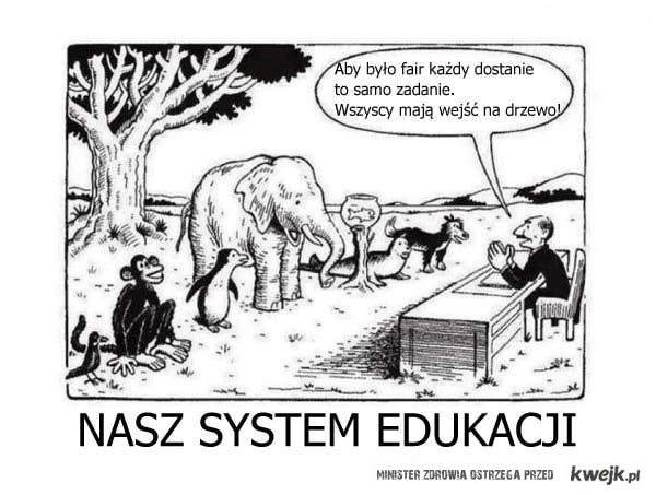 system edukacji