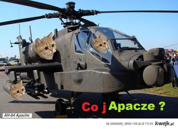 nowe zdjęcie z serii co ja pacze tym razem militarnie...