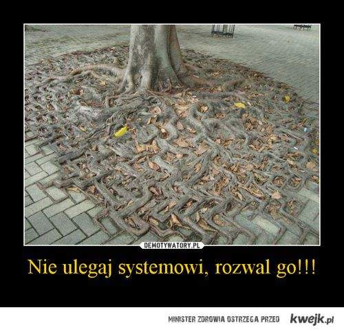 Nie systemowi!
