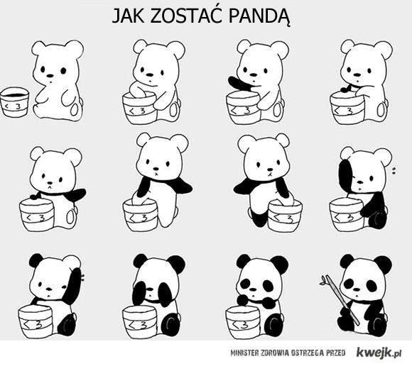 Jak zostać pandą