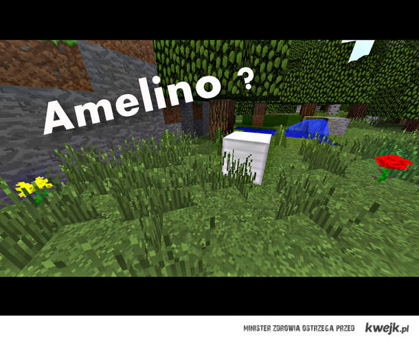 Amelino?