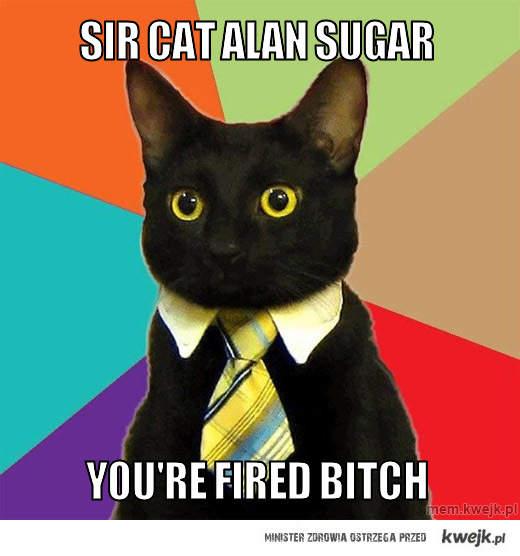 sir cat alan sugar