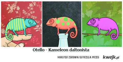 kameleon daltonista
