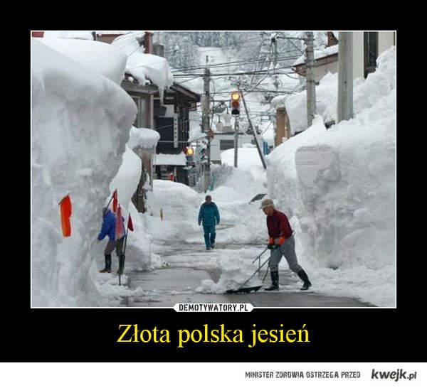 złota polska jesien