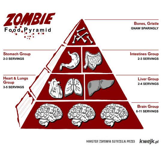 zombie_food_chain