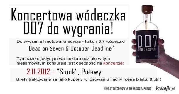 Koncert Puławy