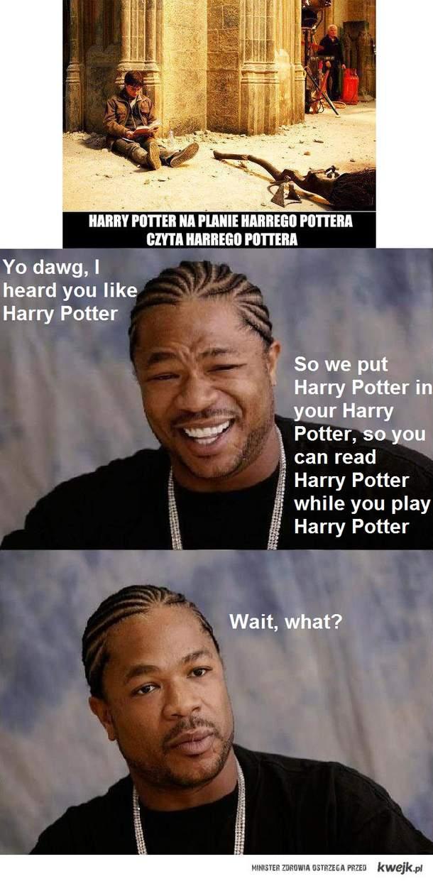 Yo Potter Dawg