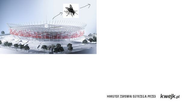 Mucha_wylatuje_za_stadion