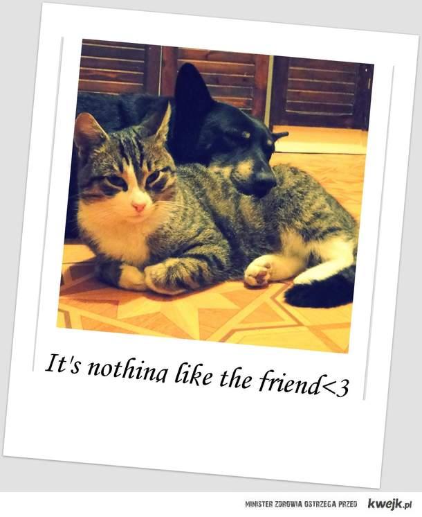 friend <3