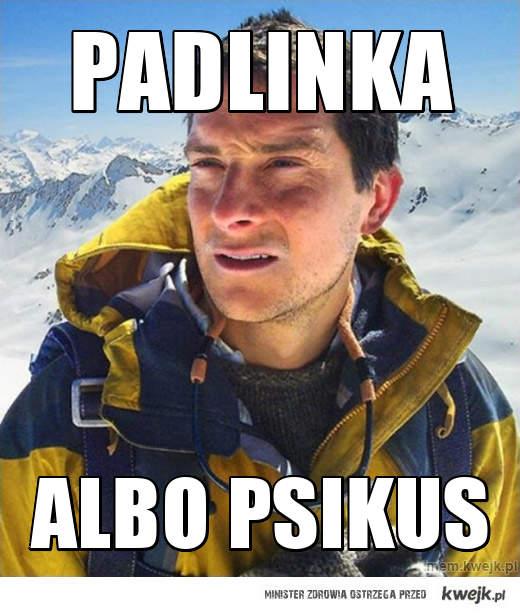 Padlinka