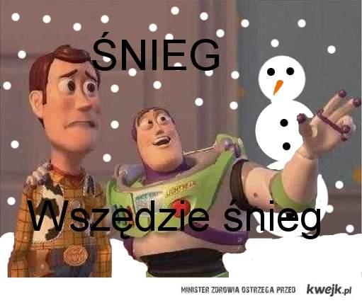 Śnieg, wszędzie śnieg
